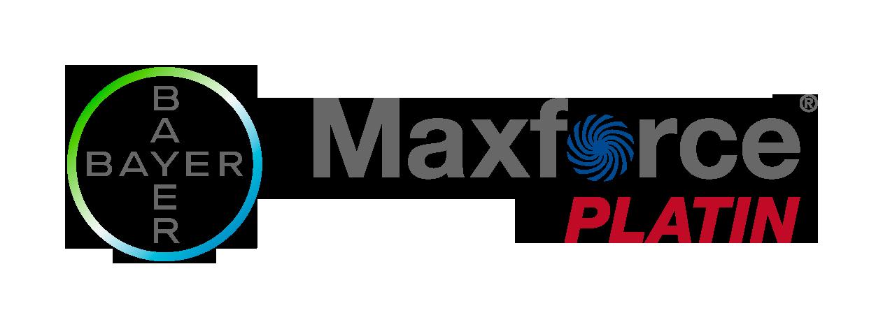 Maxforce Platin