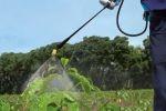 Matabi Evolution 16 Litre İlaçlama Pompası - Thumbnail